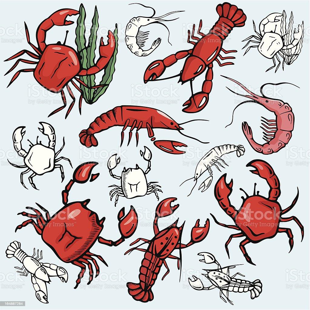 Sea World XVI: Crabs, Lobsters, Shrimps ( Vector) royalty-free stock vector art