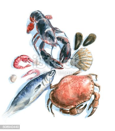 food illustration, hand drawn, Aquarell