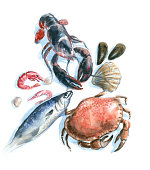 istock seafood watercolor 508940440