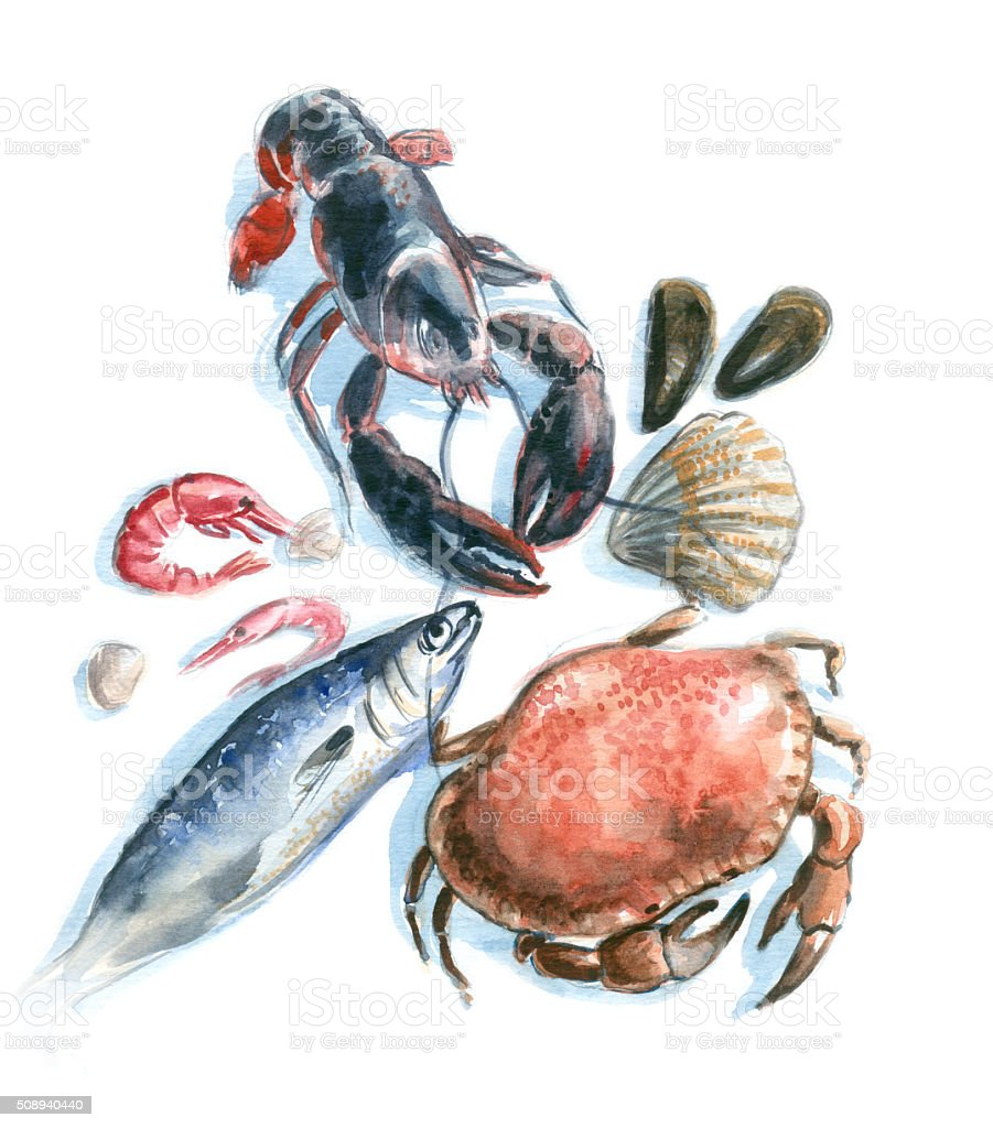 Meeresfrüchte in Aquarell – Vektorgrafik