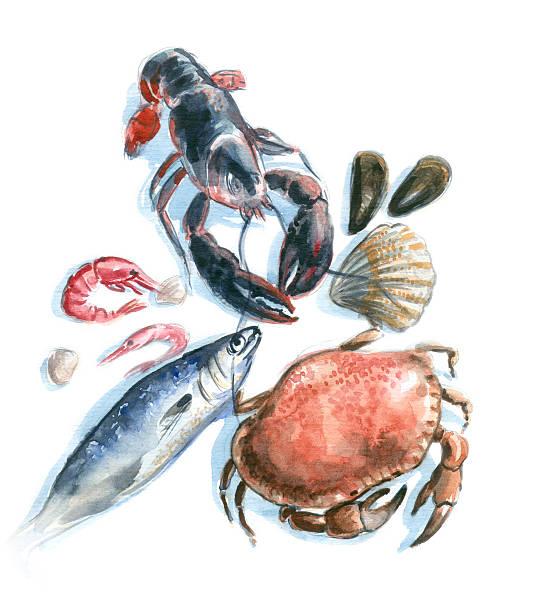 seafood watercolor vector art illustration