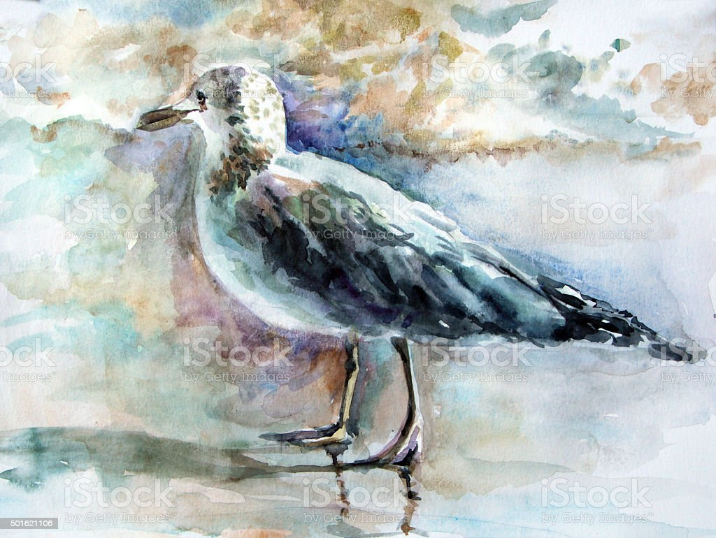 Seagull on the beach. Watercolor painting vector art illustration
