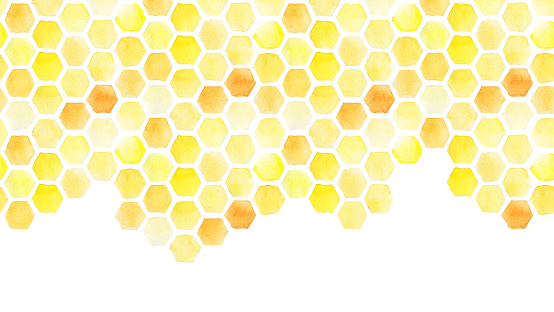 seamless background, honeycomb border. yellow honeycomb watercolor hand drawing. isolated on white background. pattern for design, banner, place for an inscription. cute drawing farming, bee