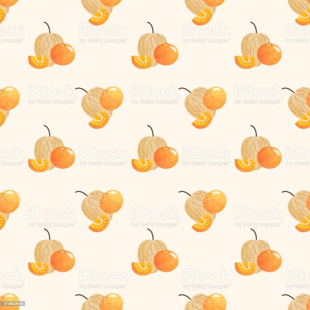 Fondo transparente imagen colorida textura acuarela tropical fruta uchuva physalis - ilustración de arte vectorial