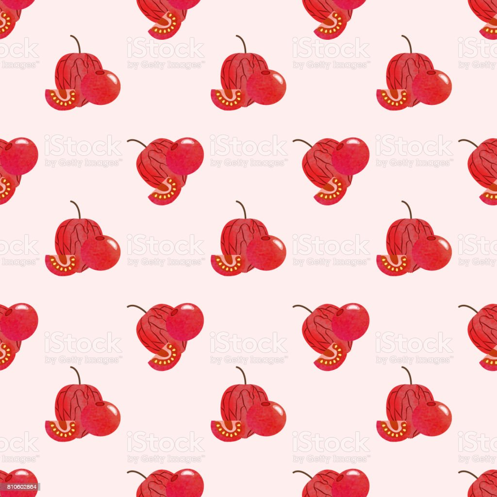 Fondo transparente imagen colorida textura acuarela roja tropical fruta uchuva physalis - ilustración de arte vectorial