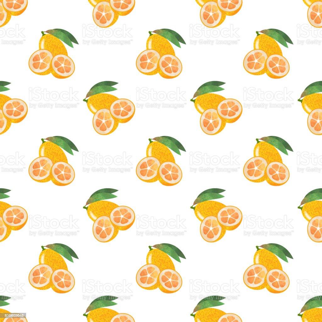 Seamless background image colorful watercolor texture tropical fruit kumquat vector art illustration