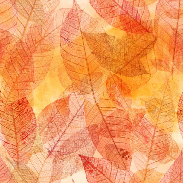 ilustrações, clipart, desenhos animados e ícones de teste padrão sem emenda do fundo das folhas douradas do esqueleto - outono