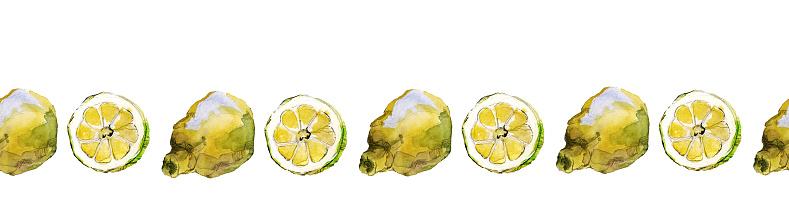 Seamless border of lemon halves and slices, isolated on white. Watercolour illustration.