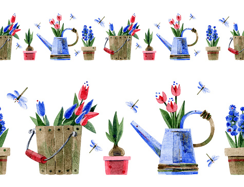 Seamless border.Tulips in a watering can and bucket, flowers in pots. Hand-drawn watercolor illustrations on a white background. Design for adhesive tape, Wallpaper, textiles, scrapbooking, packaging.