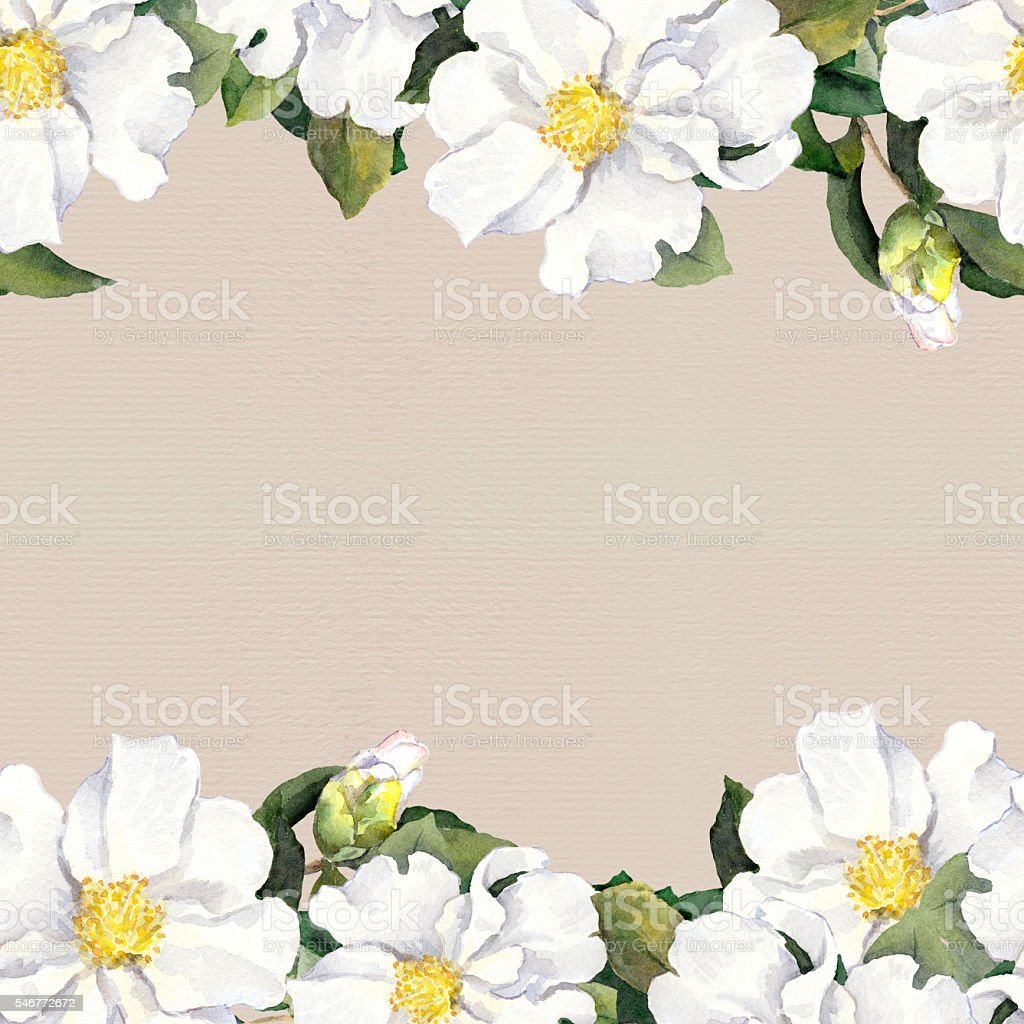 Seamless Floral Frame White Flowers Aquarelle Border Paper Texture