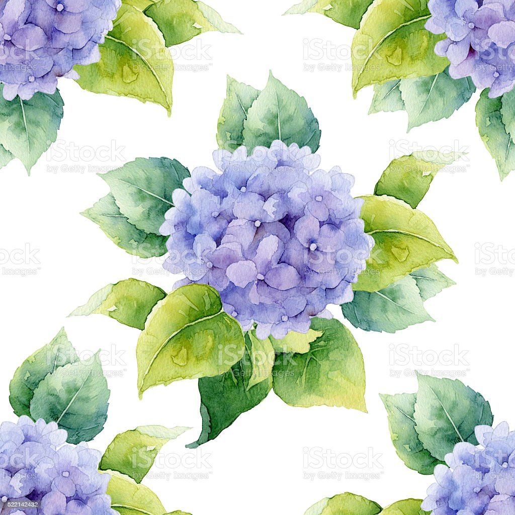 Seamless floral pattern with hydrangeas vector art illustration
