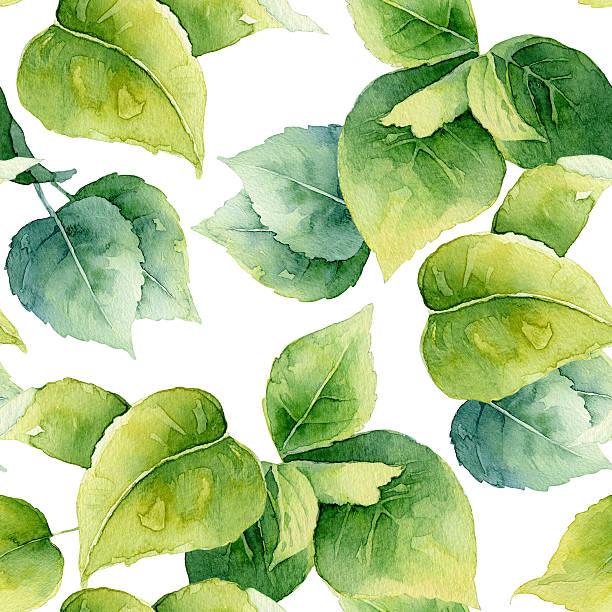 illustrazioni stock, clip art, cartoni animati e icone di tendenza di motivo floreale senza soluzione di continuità con foglie - mika
