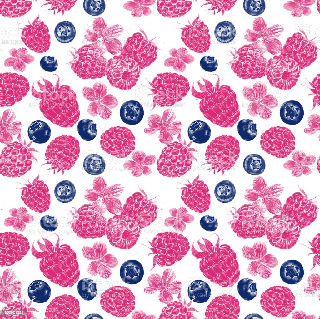 Seamless pattern. Botanical illustration of raspberries, blueberries and inflorescences. Engraving. vector art illustration