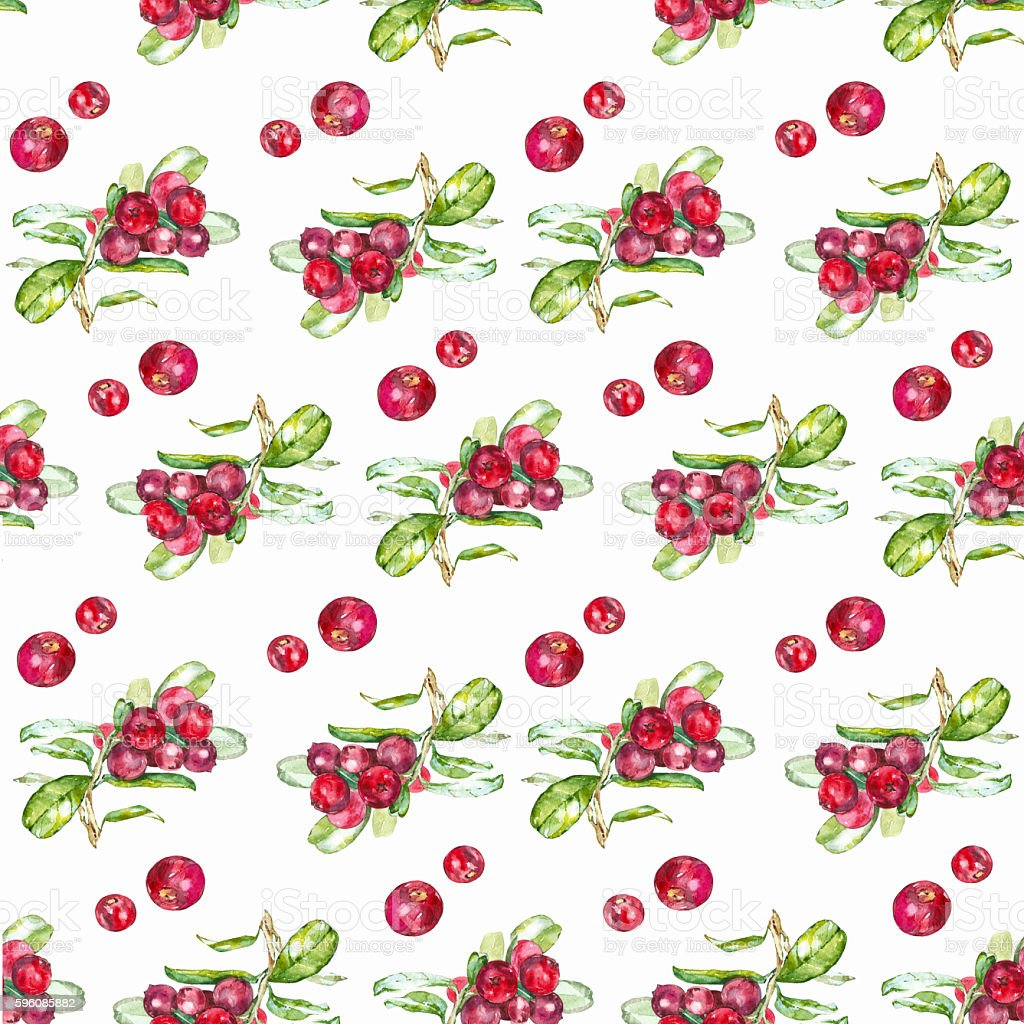 Seamless pattern cranberries royalty-free seamless pattern cranberries stock vector art & more images of art product