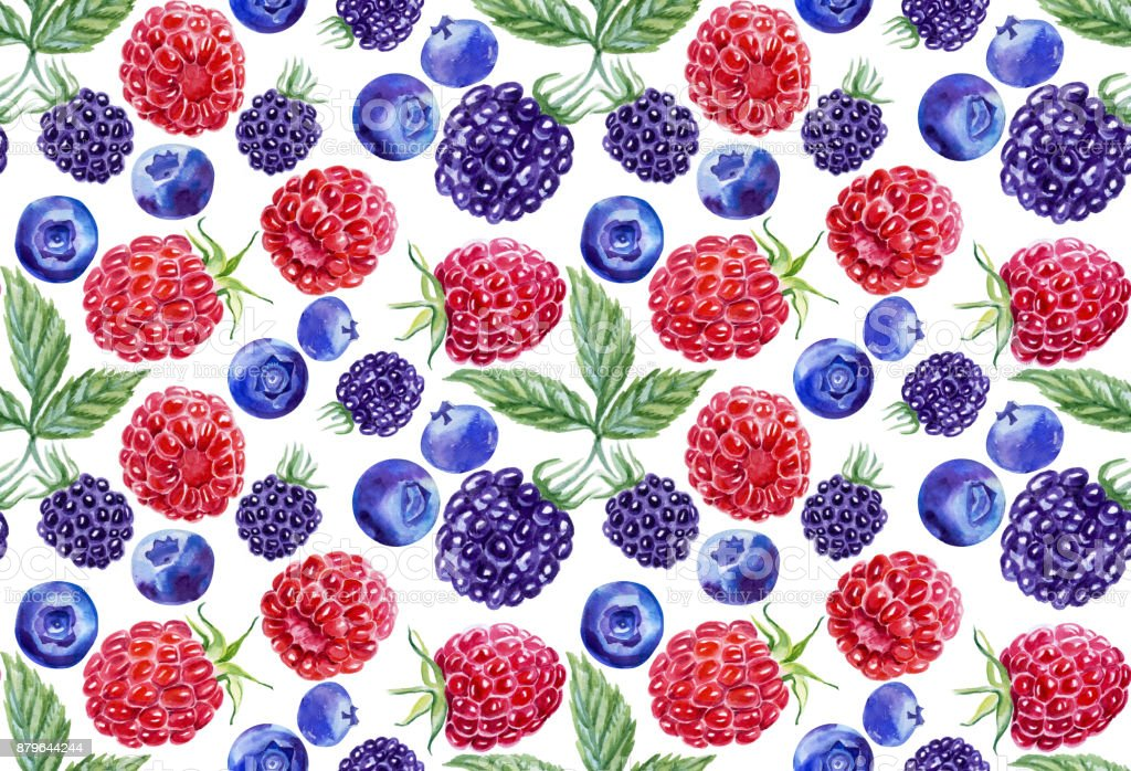 Seamless pattern of blueberries, raspberries, blackberries. Botanical illustration of watercolor. For packing, postcards, cloth. vector art illustration