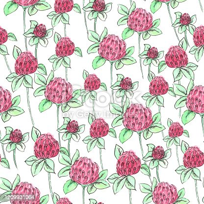 istock Seamless pattern of clover on a white background 1209931064