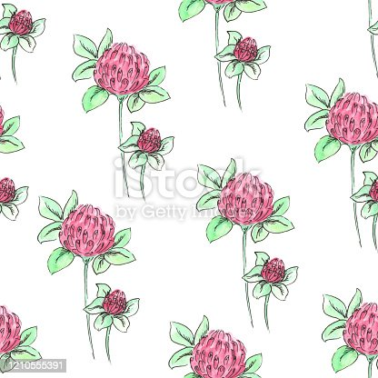 istock Seamless pattern of clover on a white background 1210555391
