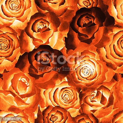 525031854 istock photo Seamless pattern of fire color roses, background. Hand drawn watercolor. 1216597751