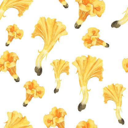 Seamless pattern of orange mushroom chanterelle on white background. Watercolor hand drawn illustration. Edible mushroom. Perfect for print, digital paper, wallpaper, textile, cover.