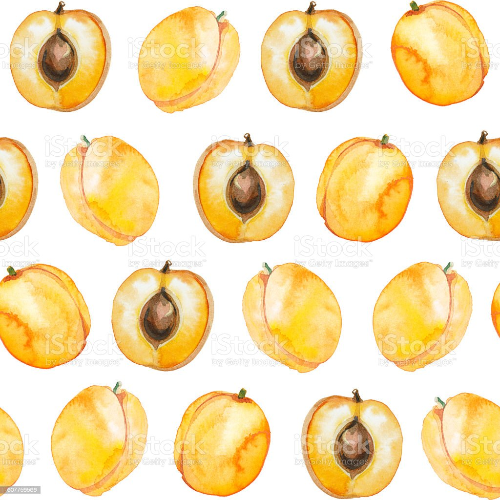 seamless pattern of watercolor apricot vector art illustration