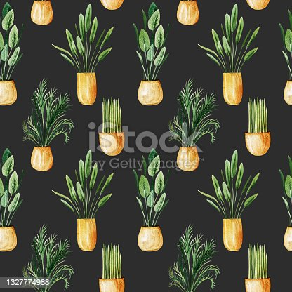 istock Seamless pattern of watercolor potted plants, home plants in gold pots, hand drawn illustration on dark background 1327774988