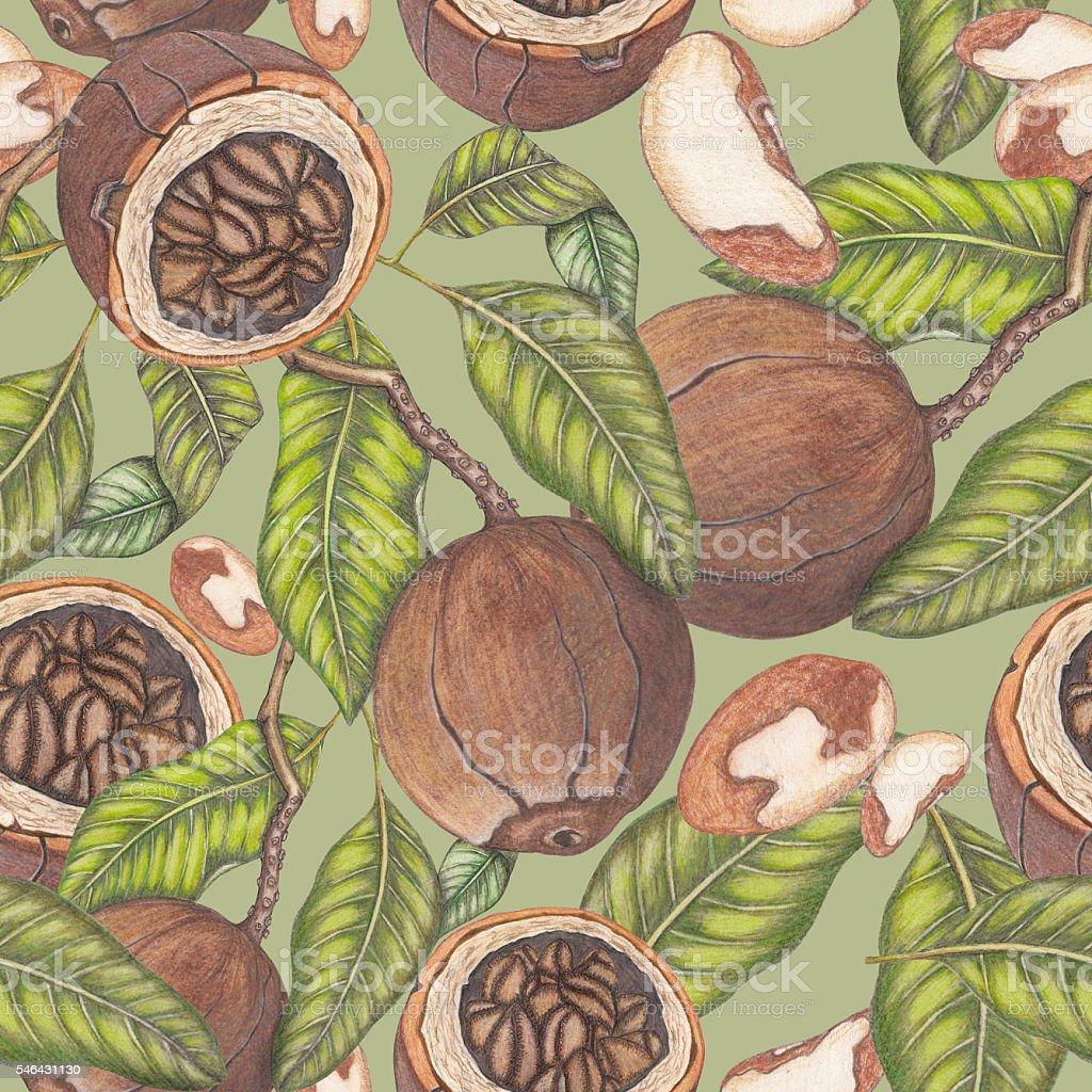 Seamless pattern on green background vector art illustration