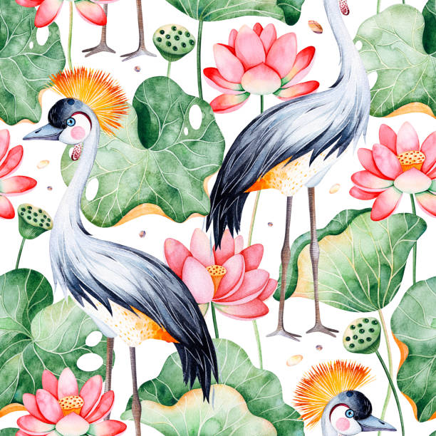 seamless pattern on white background with water lilies and black crowned crane - staw woda stojąca stock illustrations