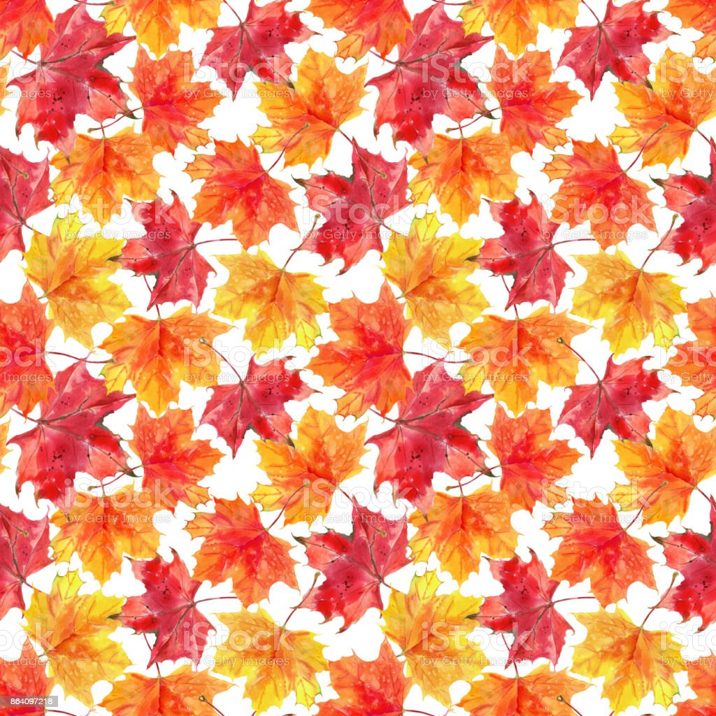Seamless pattern with autumn maple leaves. Hand painted watercolor illustration. Pattern on white background royalty-free seamless pattern with autumn maple leaves hand painted watercolor illustration pattern on white background stock vector art & more images of art