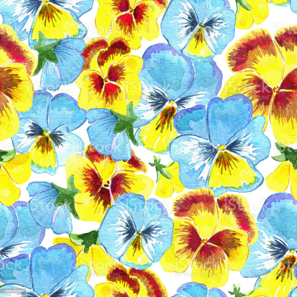 Seamless Pattern With Beautiful Yellow And Blue Pansy Flowers On