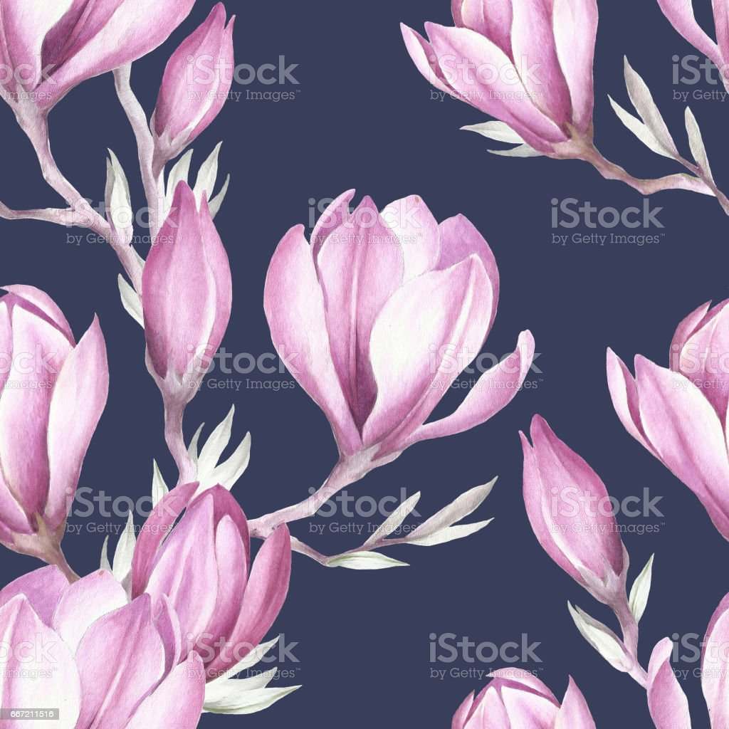 Seamless pattern with blooming magnolia twig. Watercolor illustration. royalty-free seamless pattern with blooming magnolia twig watercolor illustration stock vector art & more images of arts culture and entertainment