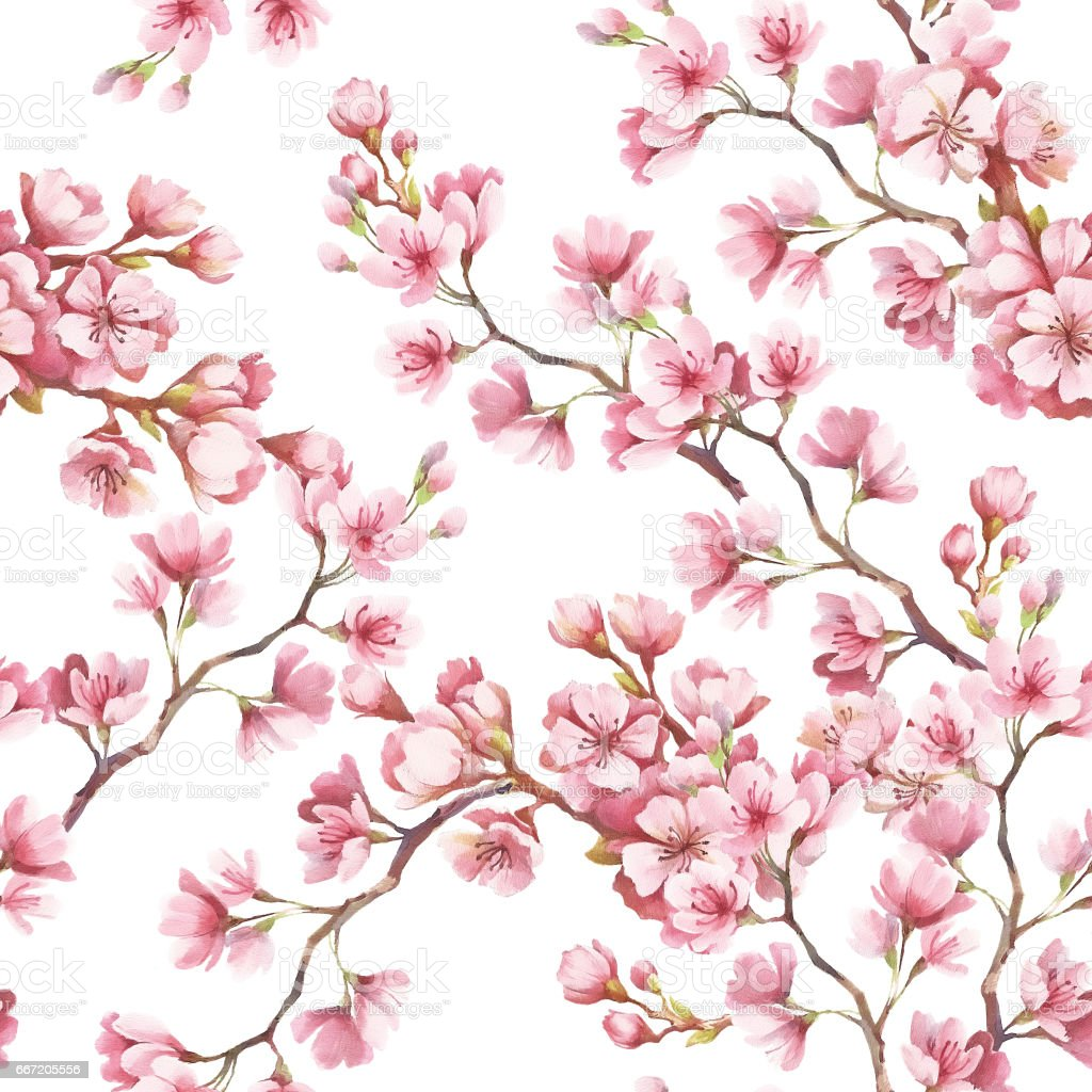 Seamless Pattern With Cherry Blossoms Watercolor