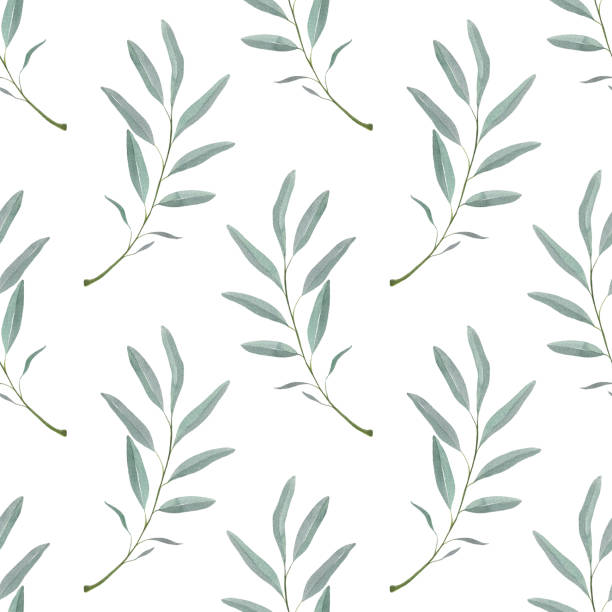 Seamless pattern with green branch. Olive branch with leaves Seamless pattern with green branch. Olive branch with leaves. For your design olive branch stock illustrations