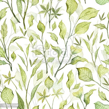 istock Seamless pattern with hand painted watercolor green leaves 1325073356