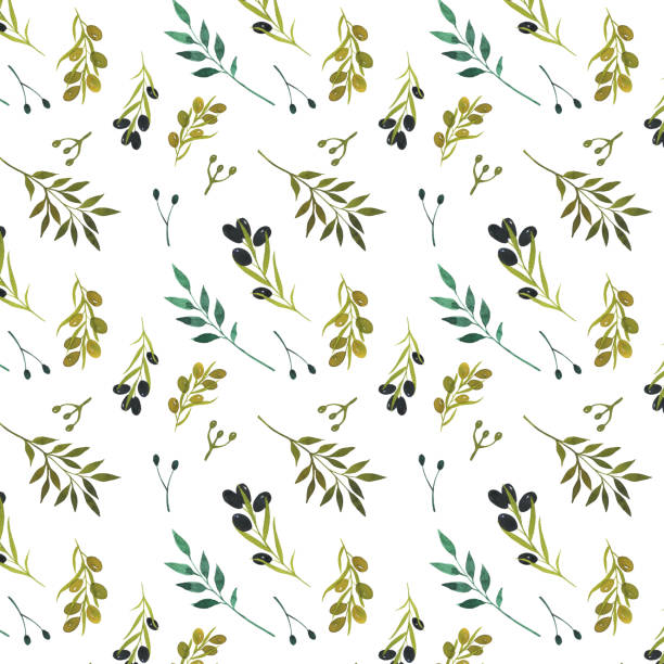 Seamless pattern with leaves and olives branches isolated on white background. Black and green olives. Botanical illustration Seamless pattern with leaves and olives branches isolated on white background. Black and green olives. Botanical illustration. For design, wedding, textile, print and more olive branch stock illustrations
