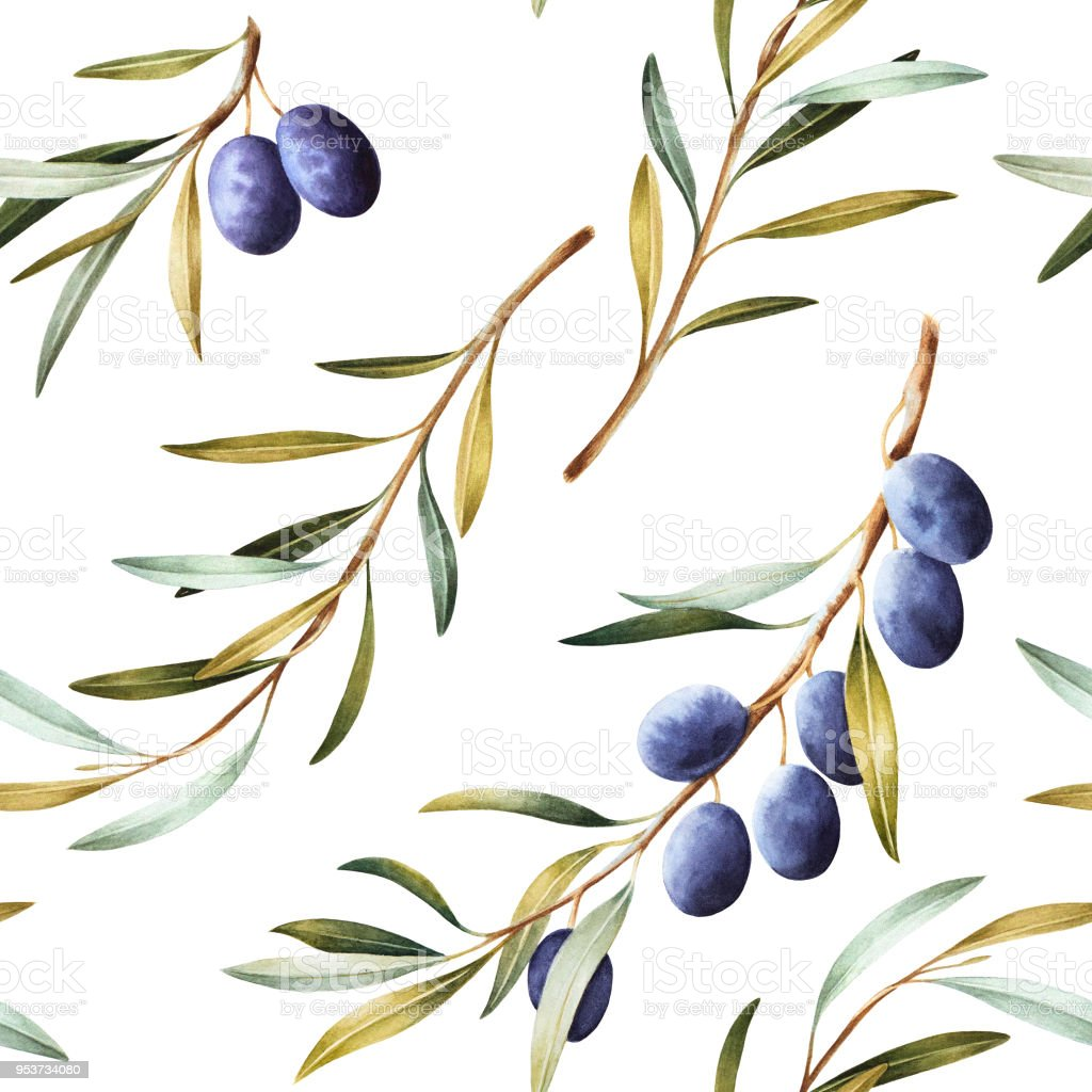 Seamless pattern with olive branches. vector art illustration