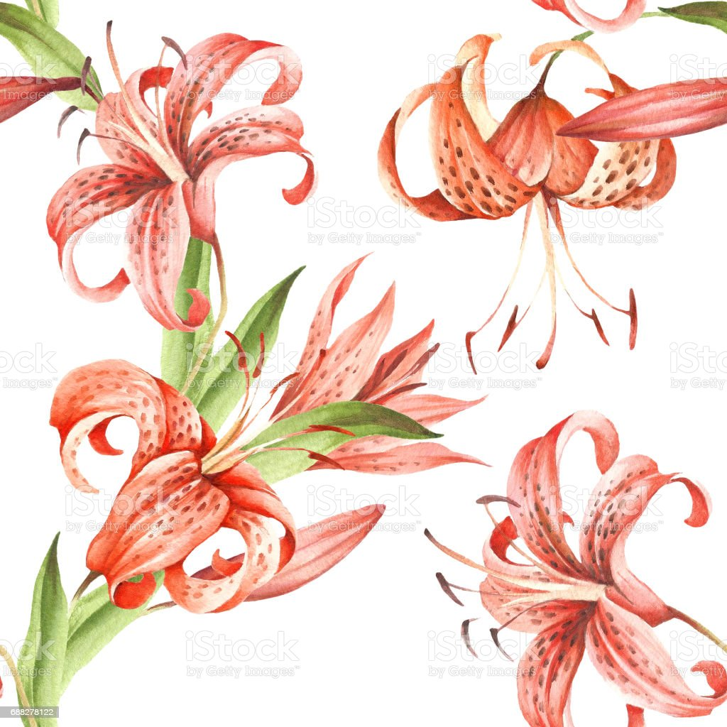 seamless pattern with tiger lily hand draw watercolor illustration royalty free stock vector