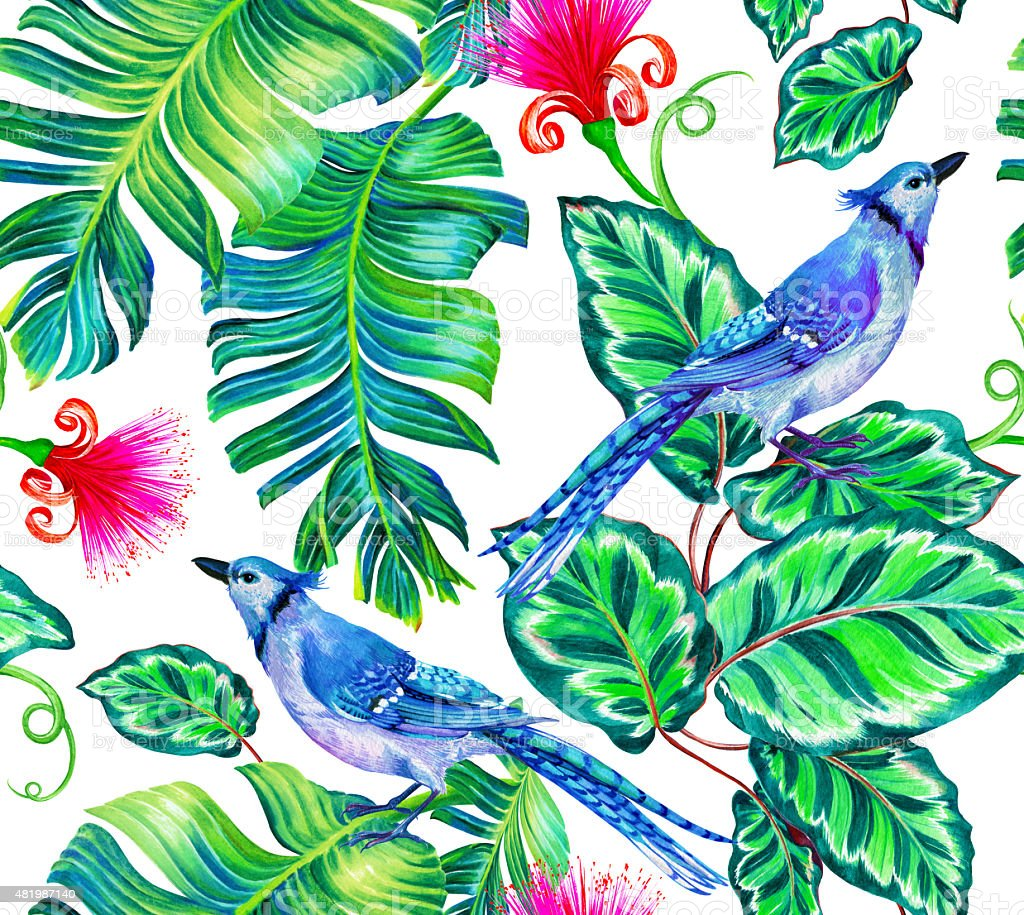 Seamless Pattern With Tropical Flowers And Birds Royalty Free Stock Vector Art
