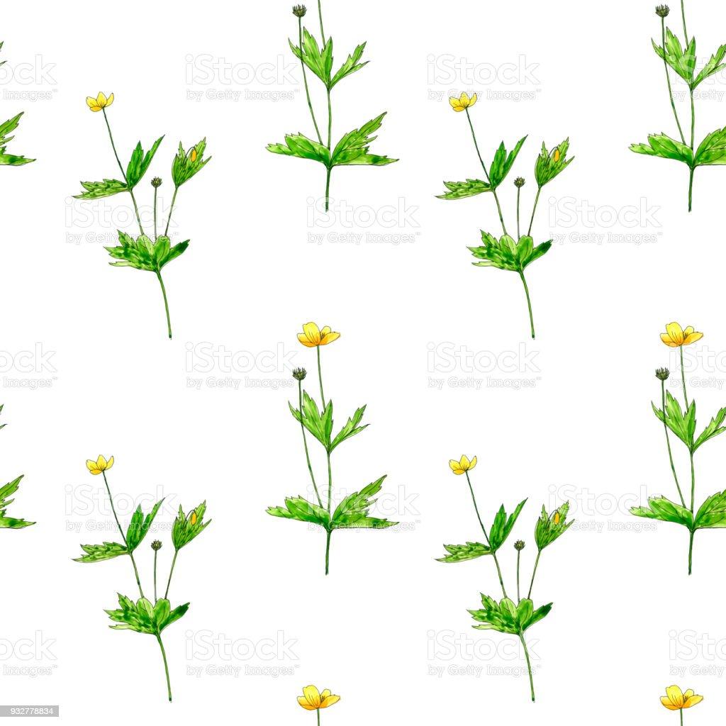 Sulu Boya çizim çiçek Ve Bitki Ile Seamless Modeli Stok Vektör