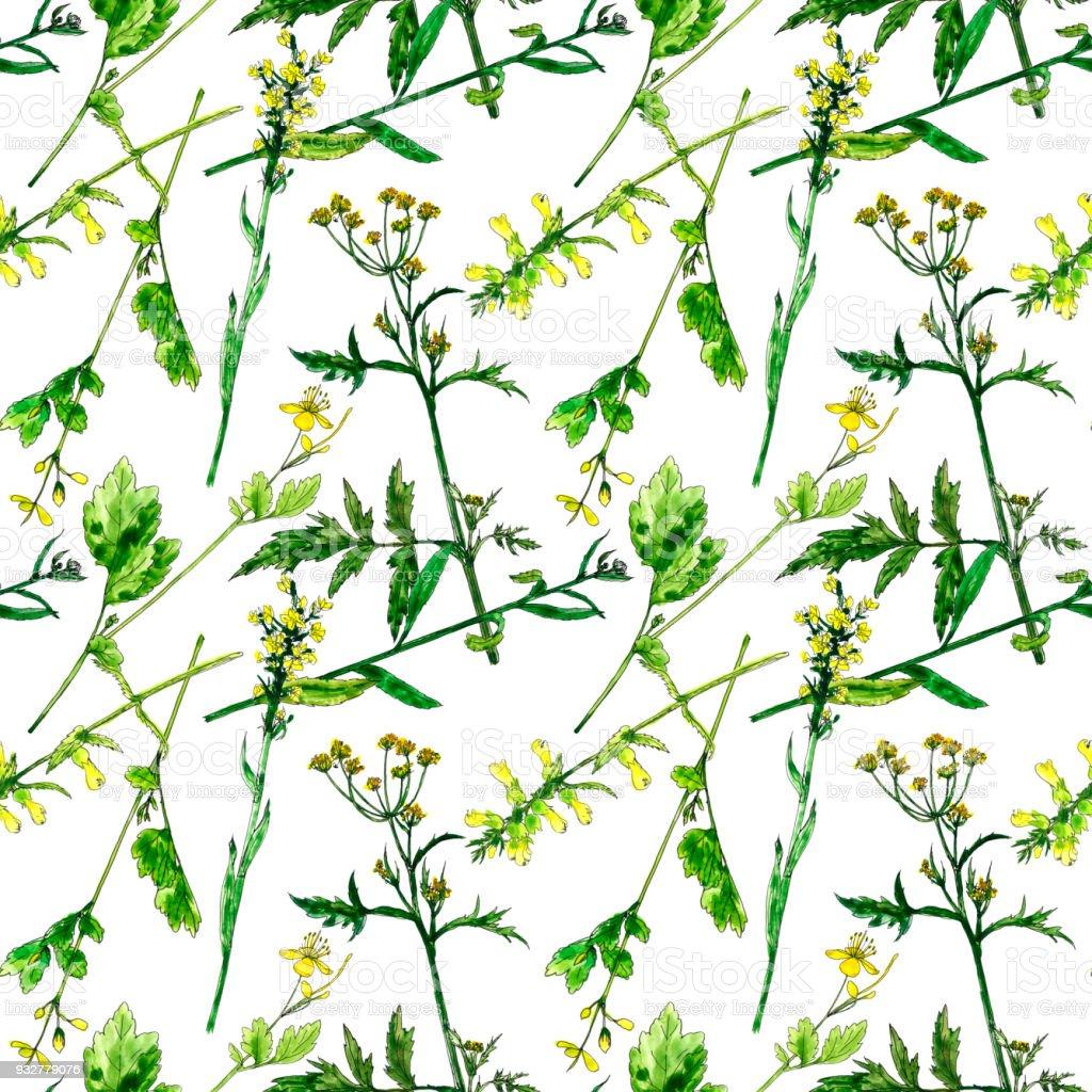 Modele Sans Couture Avec Aquarelles Dessin Fleurs Et Plantes