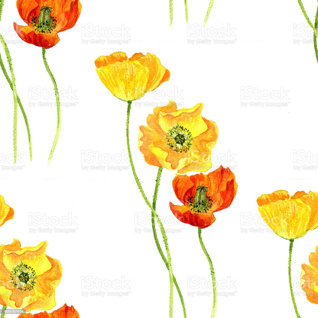 Seamless Pattern With Watercolor Drawing Flowers Of Yellow Poppies