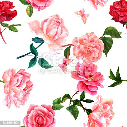 A seamless pattern with watercolor drawings of blooming red and pink roses, camellias, peonies, and butterflies, hand painted on a white background in the style of vintage botanical art