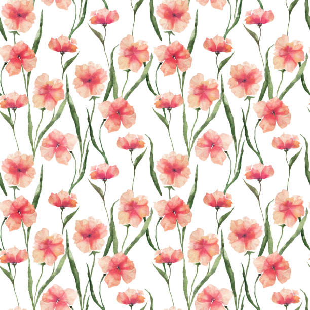 Seamless pattern with watercolor flowers. Orange flowers on a white background. vector art illustration
