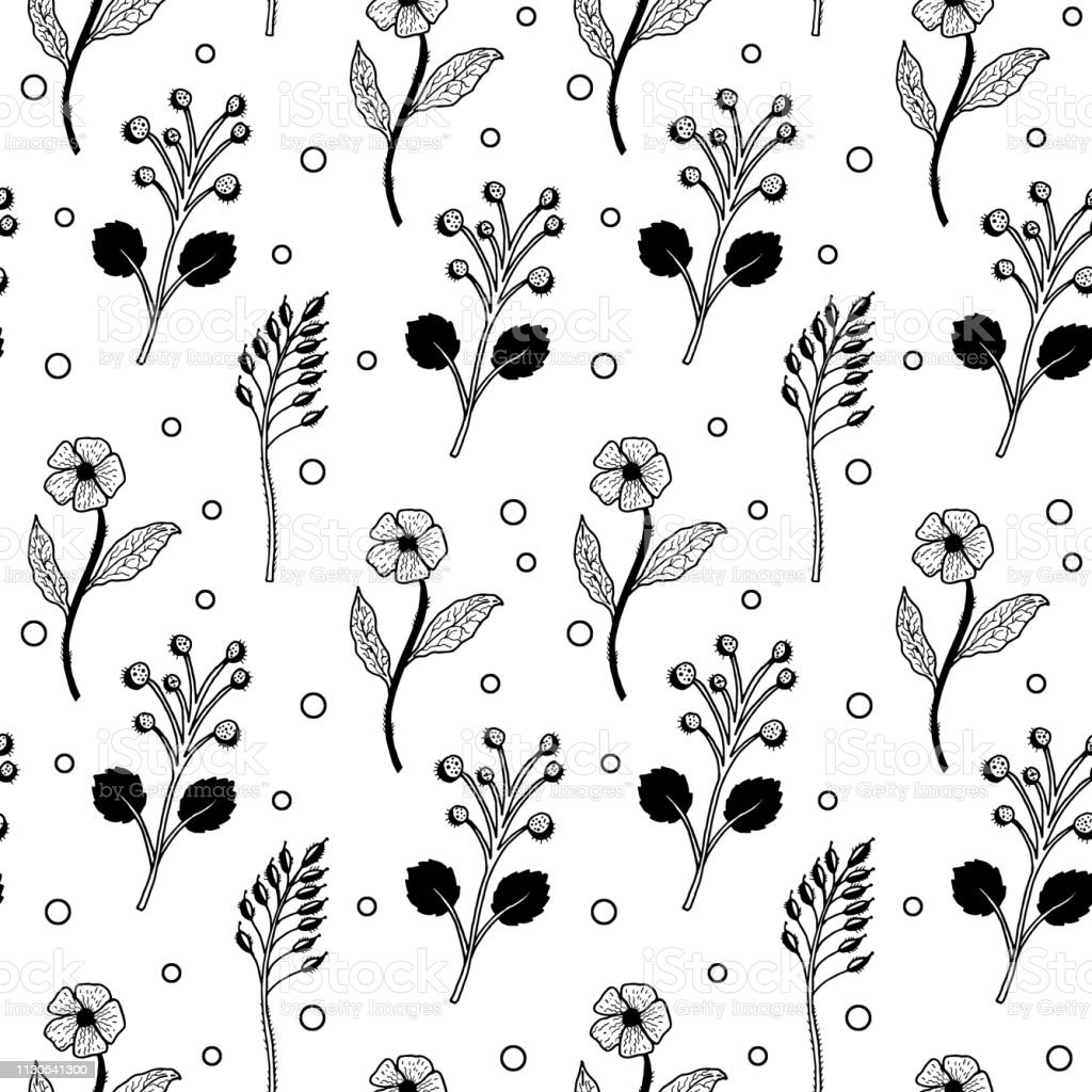 Seamless Vector Black And White Floral Pattern White Stock