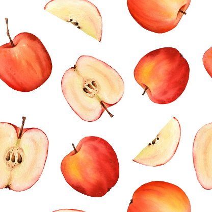 Seamless watercolor pattern of red apple, half, slice. Isolated on white background. Food illustration for thanksgiving and harvest day, scrapbooking