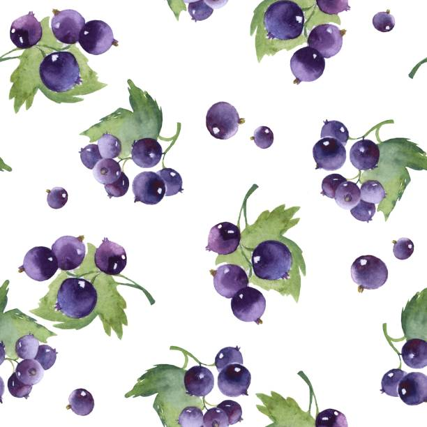 Seamless watercolor pattern with black currant. Garden berries Seamless watercolor pattern with black currant. Floral background. Berries black currant stock illustrations