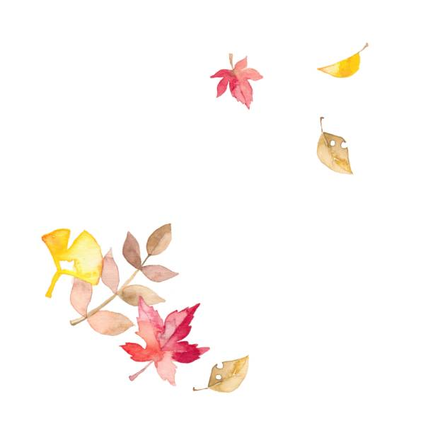 Seasonal calendar and autumn The leaf which turned red autumn leaf color stock illustrations