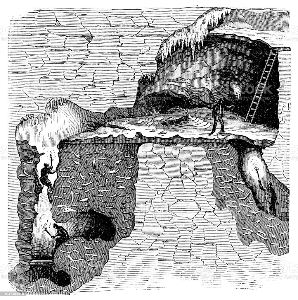 Sectional view of a bone cavern showing debris of animal bones. William Buckland (1784-1856) English geologist and clergyman, considered the remains to be evidence of the Biblical Flood vector art illustration