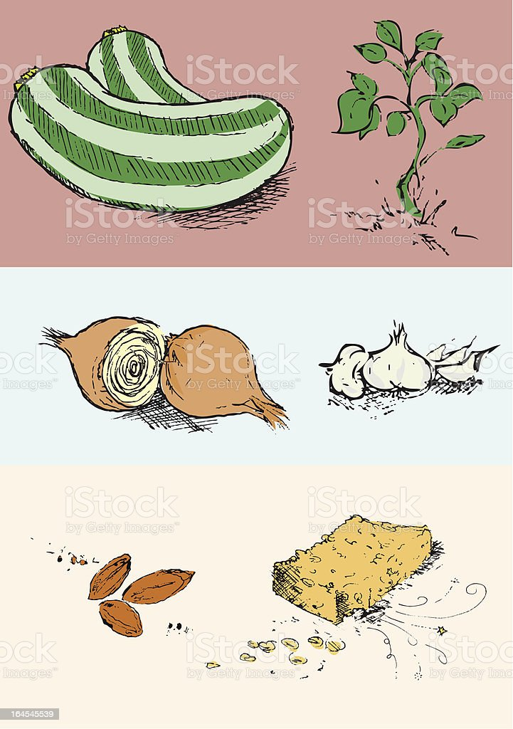 Selection of Illustrated Vegetables/Ingredients royalty-free stock vector art