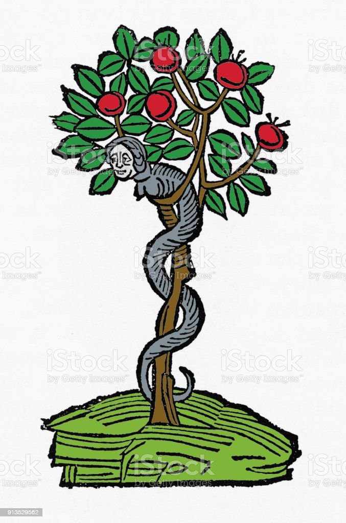 Serpent In The Apple Tree Christian Symbolism Engraving Stock Vector