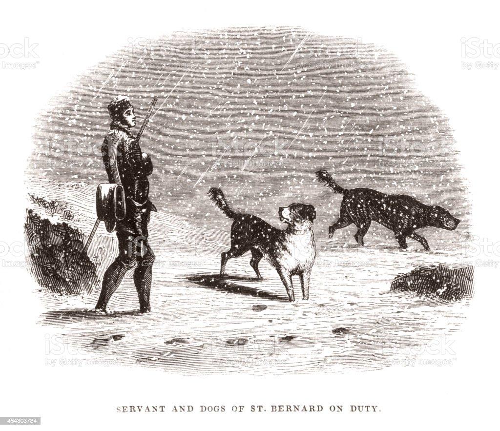 Ilustración de Servant Y Perros De St Bernard En Uso y más banco de ...